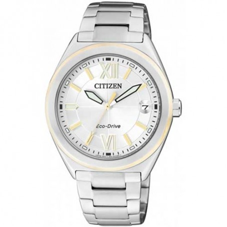 CITIZEN JOY FE6004-52A